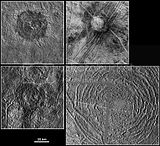 Impact Craters on Europa